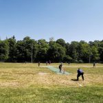 How cricket is played in the field?